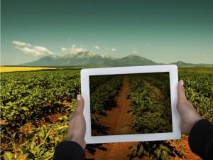 agricoltura-green-app