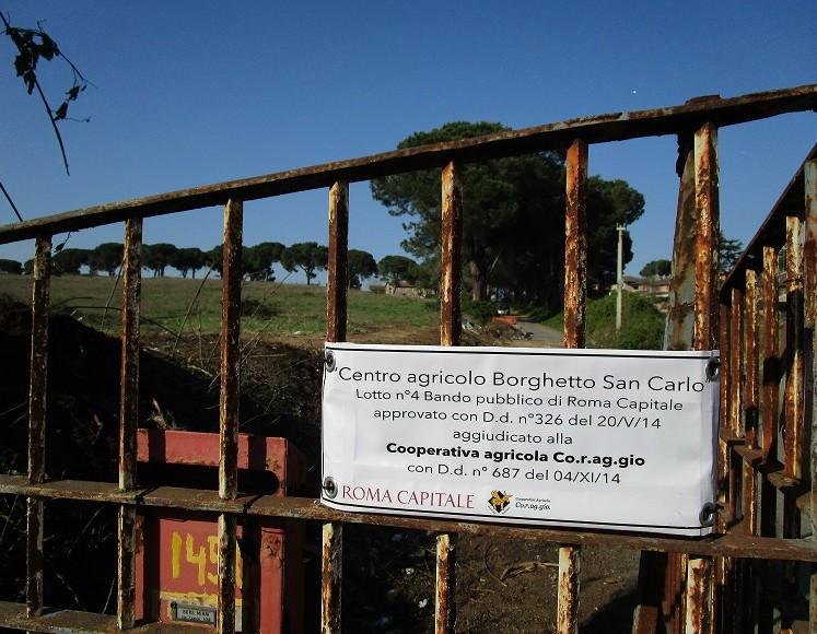 borghetto new